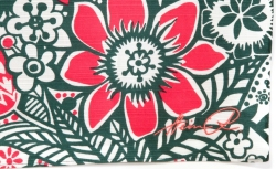 ヘイニ刺繍サイン アニャ